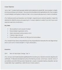 Resume Template For High School Student Adorable Sample Resume High School Terrific High School Student Resume