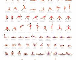 24x36 ashtanga yoga primary series with sammy seriani this poster ilrates the postures of the primary series full color poster shows perfect alignment