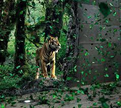 Download 3d Tiger Wallpaper HD.
