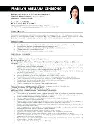 Sample Curriculum Vitae For Job Application Resume Sample For Job Apply Example Of Resume For Job Application In