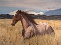 horses running in the wind. Fine Running The Wind Blows Where It Wishes And You Hear The Sound Of It But Cannot  Tell Comes From GoesJohn 38 In Horses Running Wind I
