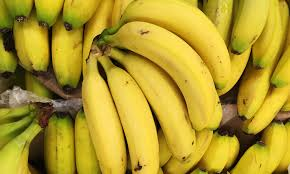 Bananas Are On The Brink Of Extinction As Devastating