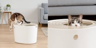 Best Litter Box Design The 6 Best Covered Cat Litter Boxes