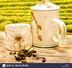 Patio meaning Lawn Tea On Patio Meaning Break Times And Outdoors Betascape Tea On Patio Meaning Break Times And Outdoors Stock Photo 172307867