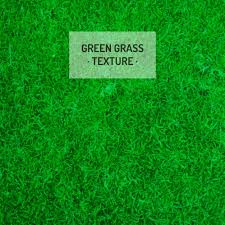 grass at night texture.  Texture Green Grass Texture Free Vector Inside Grass At Night Texture