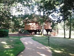 luxurious tree house hotel. Deer Park Country House Hotel: Tree Luxury Suite Luxurious Hotel