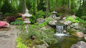 Small Picture Water Garden Designs Pictures Garden Design And Garden Ideas