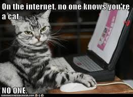 on the internet nobody knows you re a cat.  The Cheezburger Image 7106755328 Throughout On The Internet Nobody Knows You Re A Cat