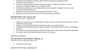 Is Resume Genius Free Resume Resume Expert Gratifying IT Professional Resume 91