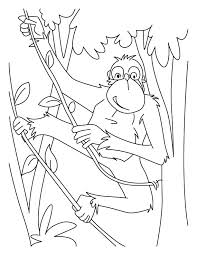 Small Picture Chimpanzees rope ladder coloring pages Download Free Chimpanzees
