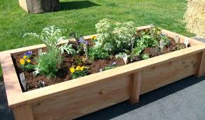 how to set up a vegetable garden bed by tablet desktop original size back to how to set up a vegetable garden bed