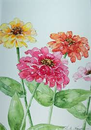 flower daily watercolors zinnias watercolor painting