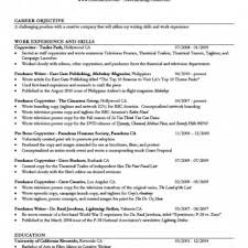 resume objective for college student examples   budget reporting