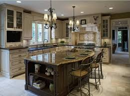 Elegant Kitchen elegant kitchen designs house living room design 8789 by xevi.us