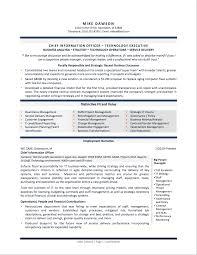 Executive Cover Letter Samples Cio Adriangatton Com