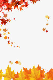 Fall Images Free Maple Leaves Autumn Golden Fall Png And Psd File For Free Download