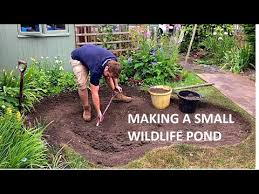 making a small wildlife pond