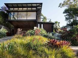 design ideas native plant project