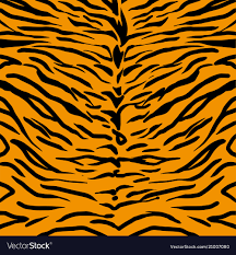 Tiger Pattern Beauteous Tiger Skin Pattern Royalty Free Vector Image VectorStock