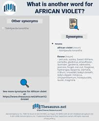 Another Word For Violet Synonyms For African Violet Thesaurus Net