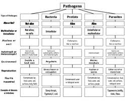 Pathogen Chart Pathogens Top Down Chart Concept Map