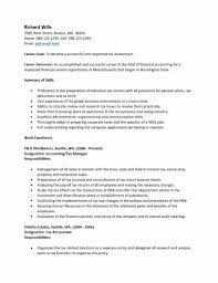 Tax Accountant Resume Basic Blank Resume Template Pdf Blank Resume