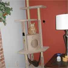 outdoor cat tree diy 9 diy cat tree plans you can get for free