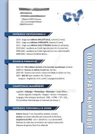 Resume Pro Cv Pro Resume By Allowhine On Deviantart