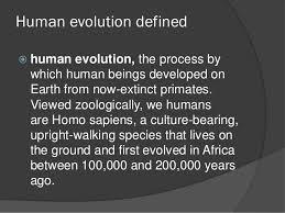 human evolution essay sample essay on international human rights law