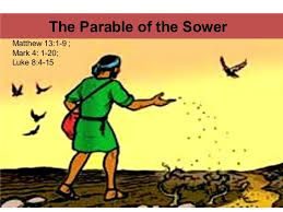 the parable of sower. Unique Parable The Parable Of The Sower Matthew 1319  Mark 4 1  And Of P