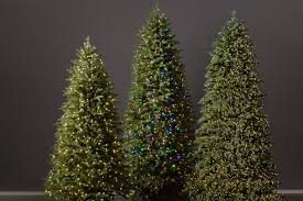 Balsam Hill Light String Out Christmas Tree Lights The Balsam Hill Guide Balsam Hill Blog