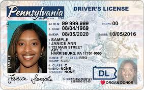 Driver New Design New Driver License