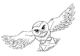 Small Picture Snowy Owl Coloring Page Coloring Home