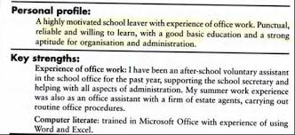 cv personal profile bullet points stanford essay example case  example essay love story