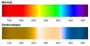 Deuteranopia Red Green Color Blindness Colblindor