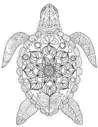 turtle coloring pages.  Coloring Best Free Turtle Coloring Page Printables And Turtle Coloring Pages C