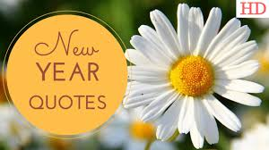 Beautiful Happy New Year Quotes Best Of Happy New Year Quotes Beautiful New Year 24 Video