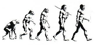 Evolution Of Man Chart Evolution Of Man Evolution Tattoo Evolution Guy Pictures