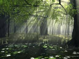Backgrounds For Cool Forest Nature Backgrounds wwwsnapbackgroundscom