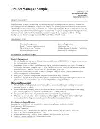 Improvement Plans Templates Performance Improvement Plan Example Template Pielargenta Co