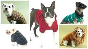 Free Knitted Dog Sweater Patterns Unique Knitting For Dogs Camwellsco