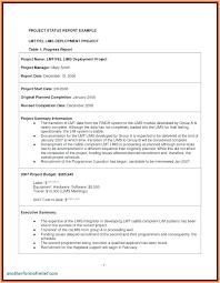 Technical Rt Executive Summary Example Template Sample