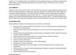 Enchanting Sample Resume B2b Sales Image Documentation Template