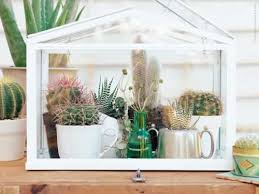 Mini Greenhouse from IKEA