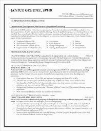 Best Resume Formats Gorgeous Resume Best Resumes Formats And Examples Awesome Resume Example