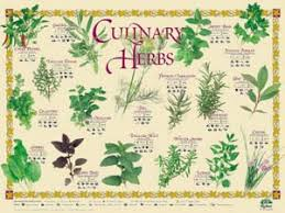 Five Essential Herbs In The Kitchen Delishably