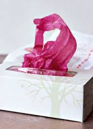 your plastic bags in a tissue box
