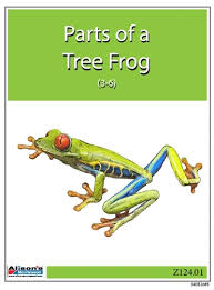 Parts Of A Frog Montessori Materials Parts Of A Tree Frog Printed