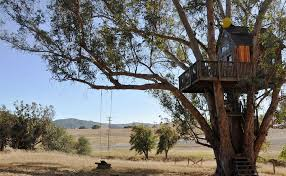 Best Tree House Camping In Southern CaliforniaTreehouse Vacation California