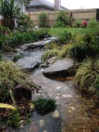 Dry Stream Garden Design The Rainforest Garden How To Design A Dry Creek Bed 10 Tips